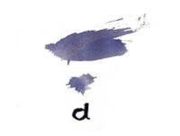 Programa Distàncies