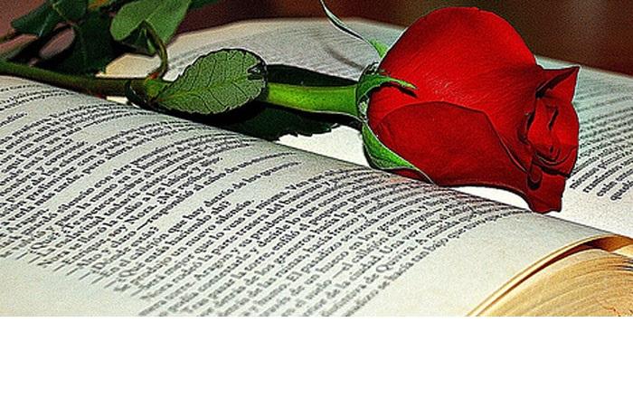 Día del Libro, Sant Jordi