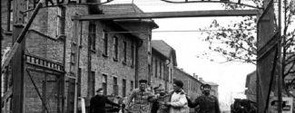 Imatge de l'alliberament d'Auschwitz