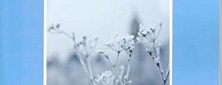 Portada de Alma escarchada / Suflet înghețat