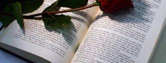 Sant Jordi, Día del Libro